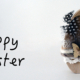 happy easter, frohe Ostern, Zeit, ressource, quality time, entschleunigen, time, emotions, coaching, Consulting, stern, pandemic, pandemic, corona, covid-19