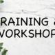 Training, Learning, Praxis, KMU, Wissensvermittlung, Seminare, Vorträge, Knowledge, Workshop
